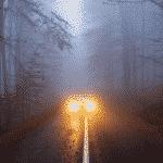 5 Best LED Fog Light Bulbs (2020 Reviews)