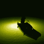 The Best Underwater Fishing Lights To Buy