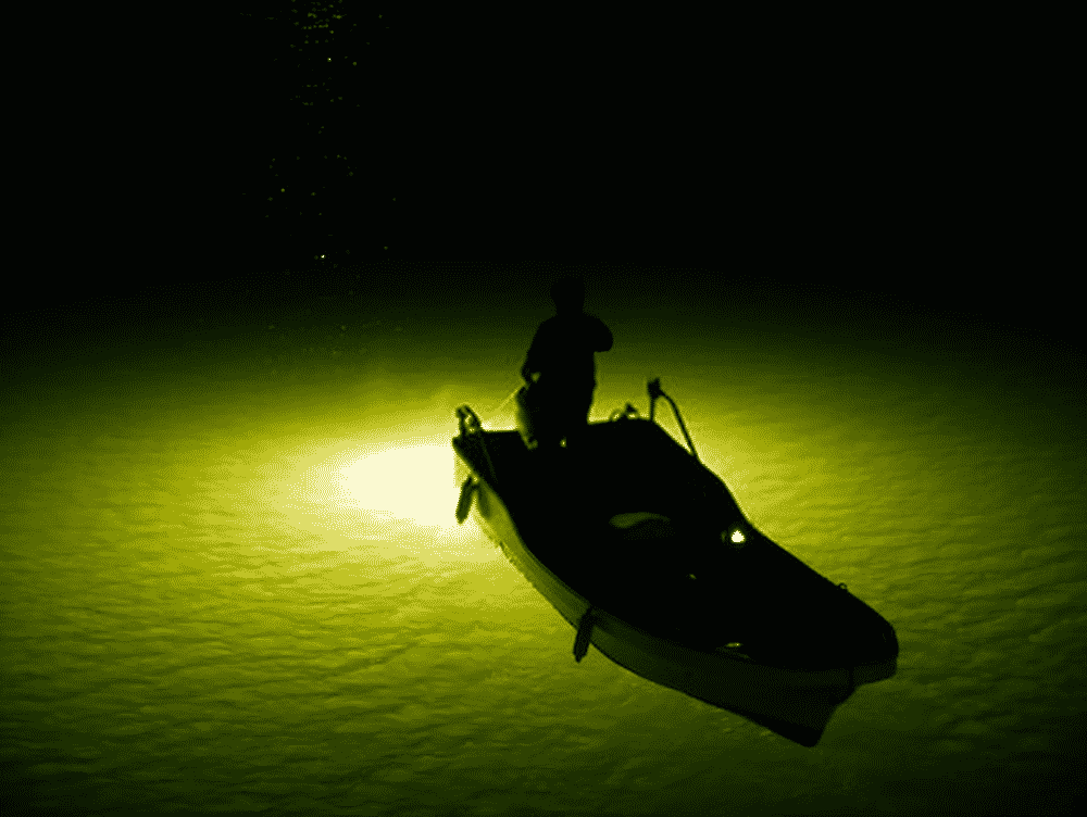 Green and white lights are the best attracting lights for fishing
