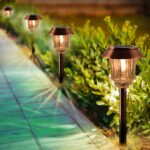 100 Lumen Solar Path Lights (Reviews And Facts)