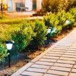 Best Solar Path Lights: Reviews & Buying Guide